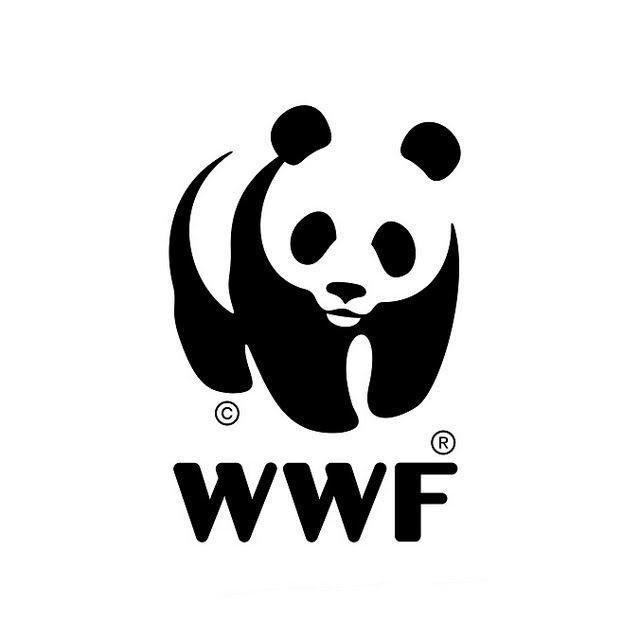 WWF Bot for Kik