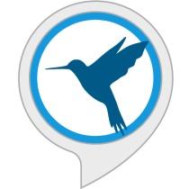 Ambient Noise: Bird Sounds Bot for Amazon Alexa
