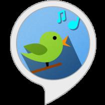 Bird Song Bot for Amazon Alexa