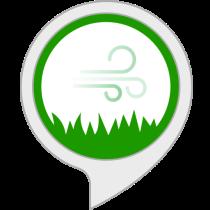 Sleep Sounds: Windy Meadow Bot for Amazon Alexa