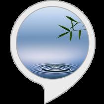 Relaxing Sounds: Feng Shui Music Bot for Amazon Alexa