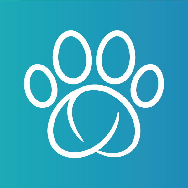 Sure Petcare Bot for Facebook Messenger
