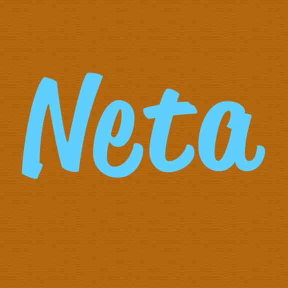 Neta Bot for Facebook Messenger