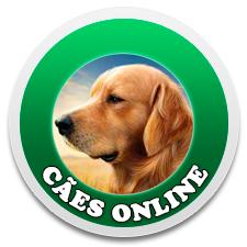Cães Online Bot for Facebook Messenger