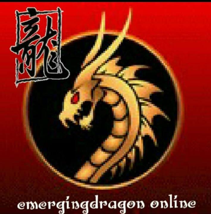Emergingdragon Online Bot for Facebook Messenger