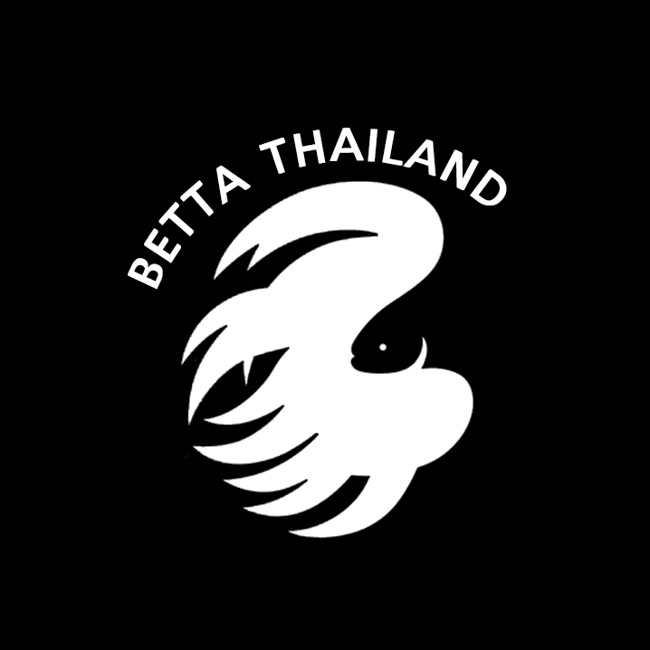 Betta.Thailand จำหน่ายปลากัดราคาปลีก-ส่ง ราคาถูก Bot for Facebook Messenger