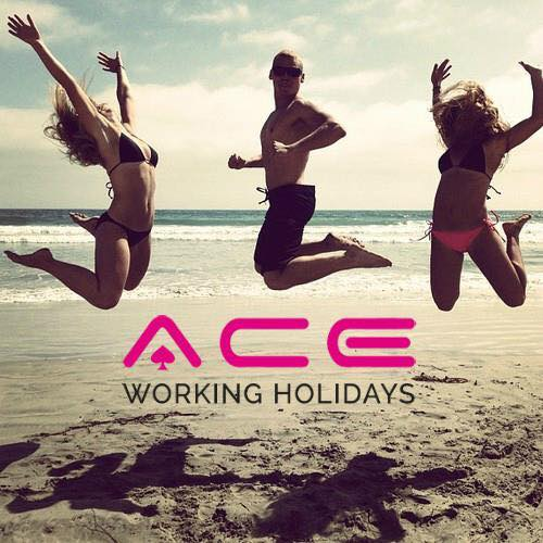 Ace Working Holidays Bot for Facebook Messenger